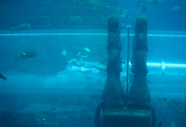 Conheça o tobogã construído em um tanque com tubarões!12