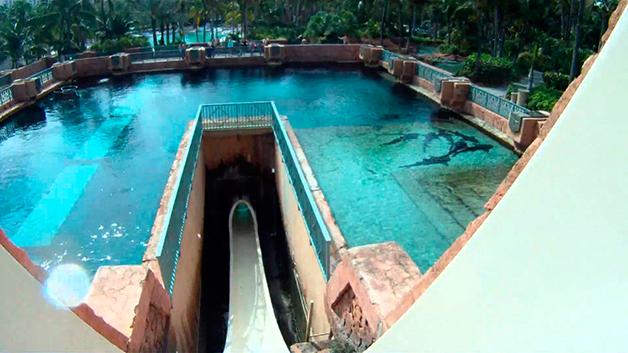 Conheça o tobogã construído em um tanque com tubarões!2