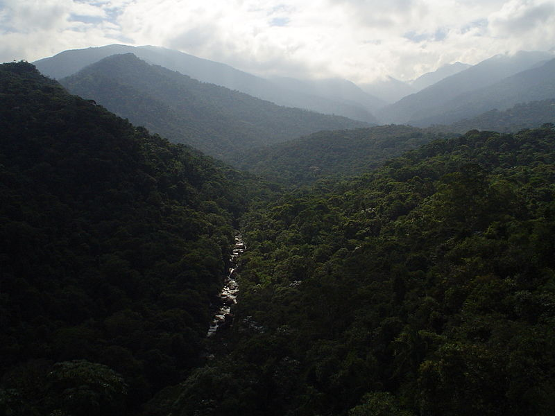 800px-Itatiaia_national_park