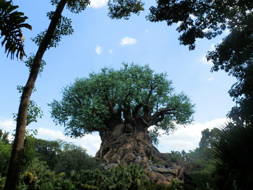 Árvore da Vida no Animal Kingdom, Disney