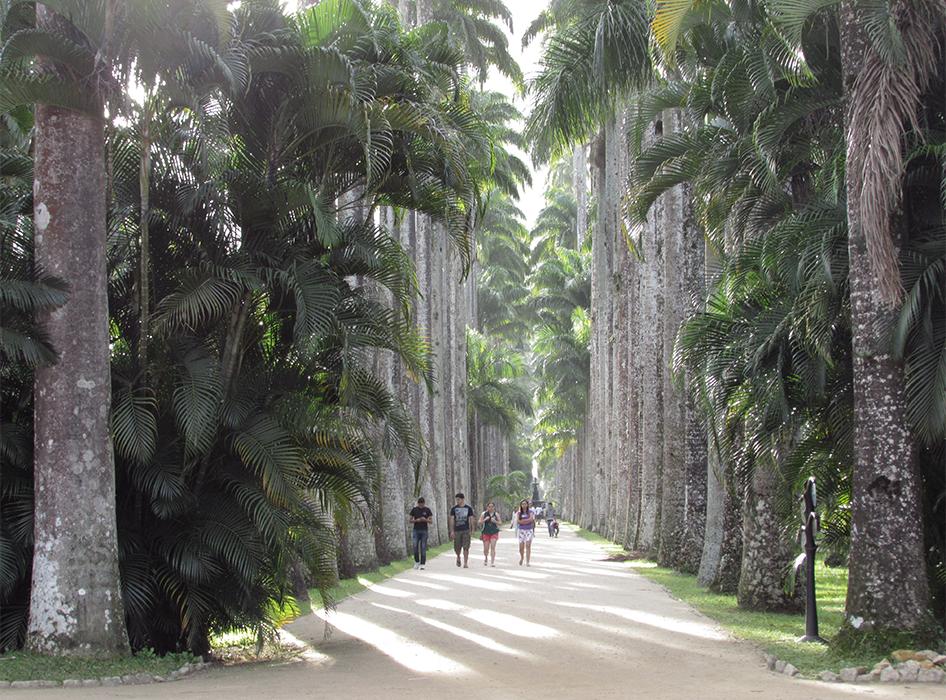 Jardim Botânico - Foto: Rebecca Albino